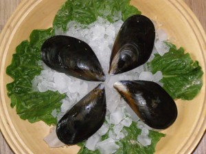 Sawmill Bay Mussels